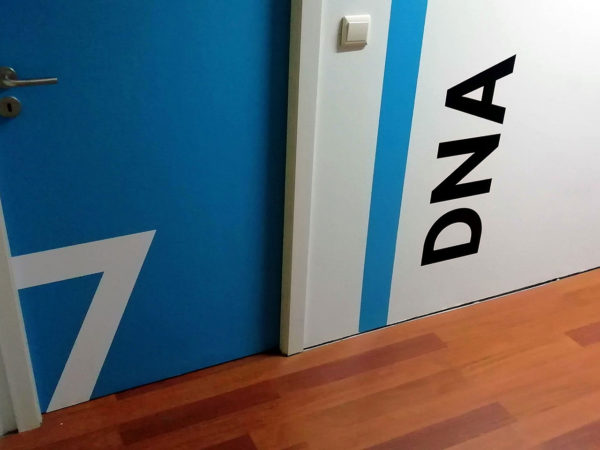 Decoração das Portas - Sala 7